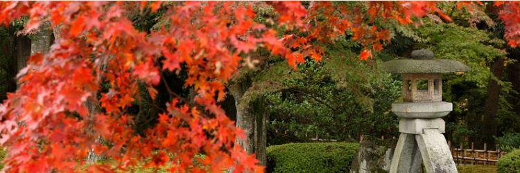 Kenrokuen Kanazawa Autumn