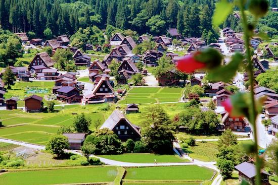 Shirakawago spring