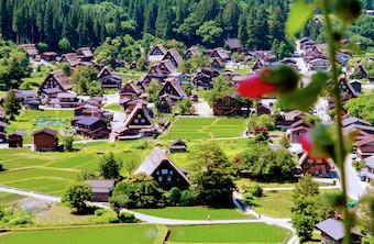 Shirakawago holiday package