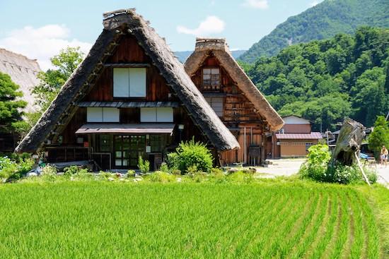 shirakawago tour spring